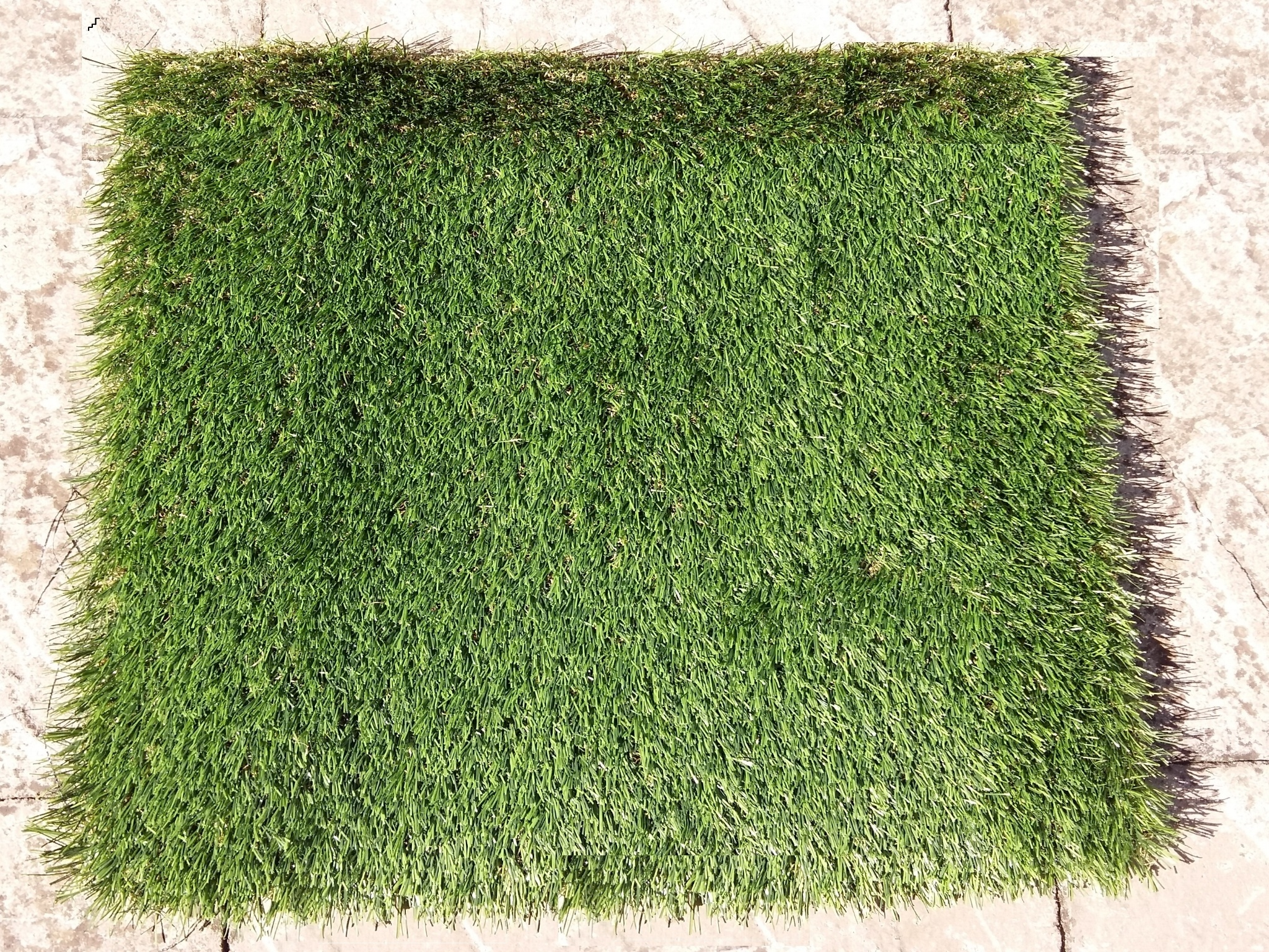 Artificial_Turf.jpg