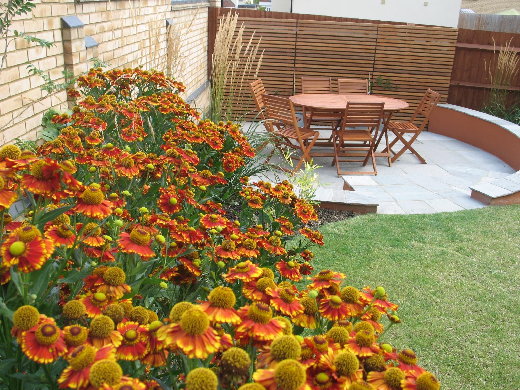 Garden_Design-860907-edited.jpg