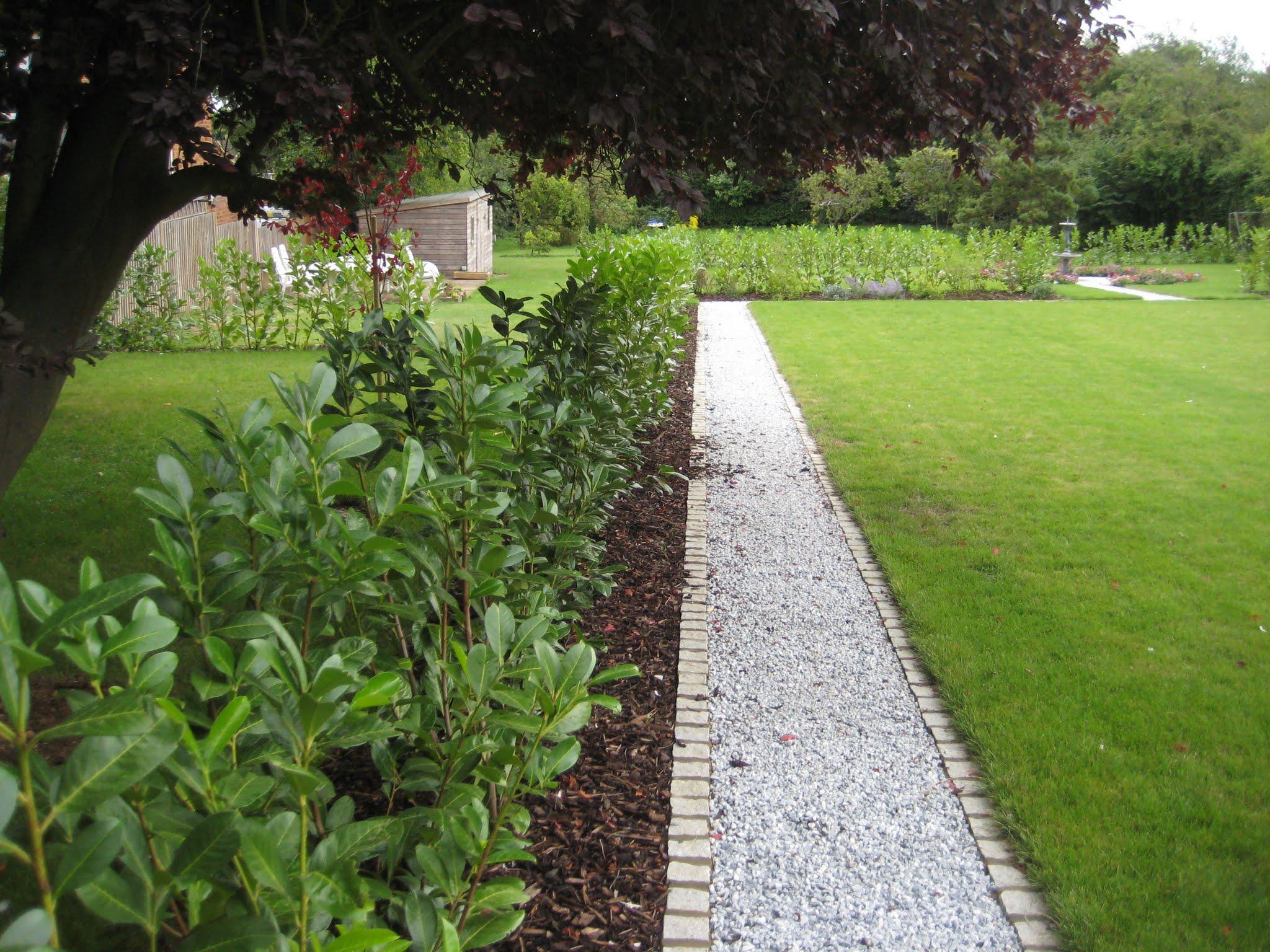 Lawn & Gravel Path